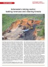 indonesia mining sector